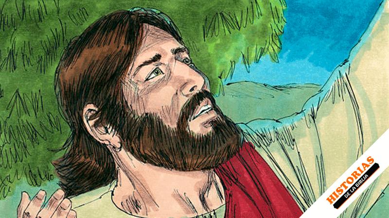 Jesús, camino al Padre
