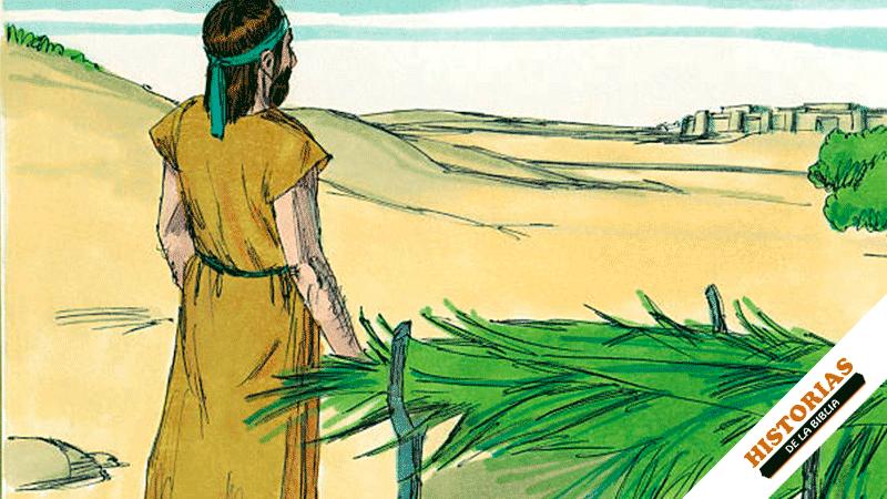 Jonás y la Calabaza