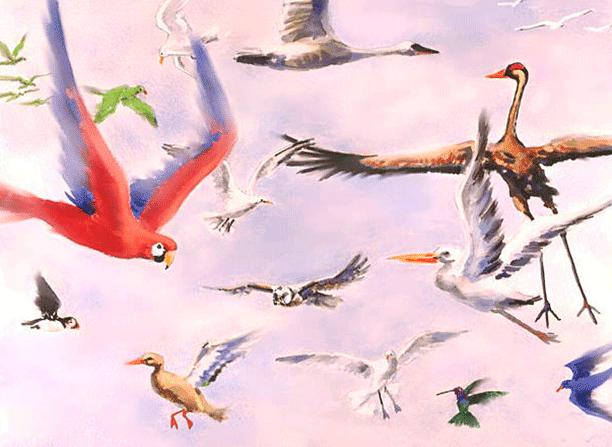 Creación de las Aves Según la Biblia
