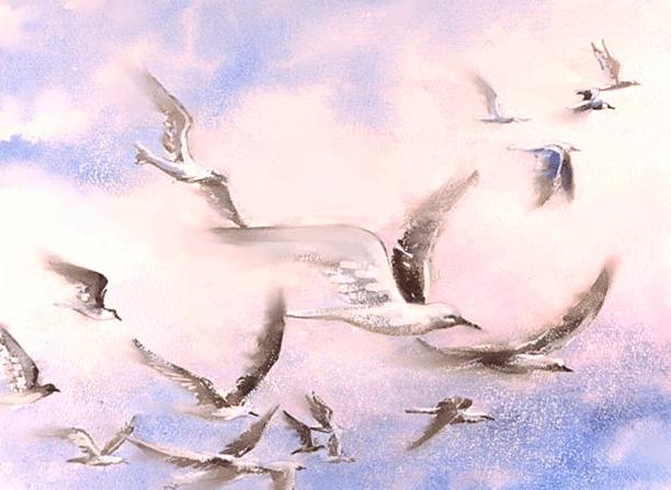 Creación de las Aves