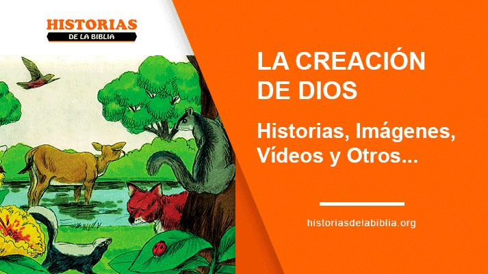 La Creación De Dios Historias Imágenes Vídeos Y Otros